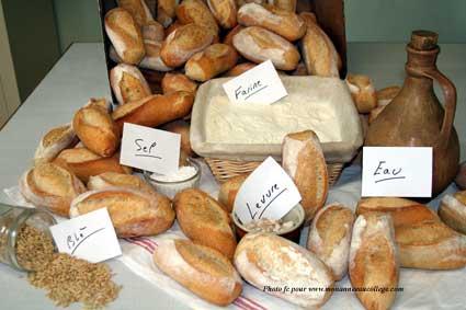 vers la fbrication du pain en classe